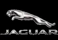 jaguar_v